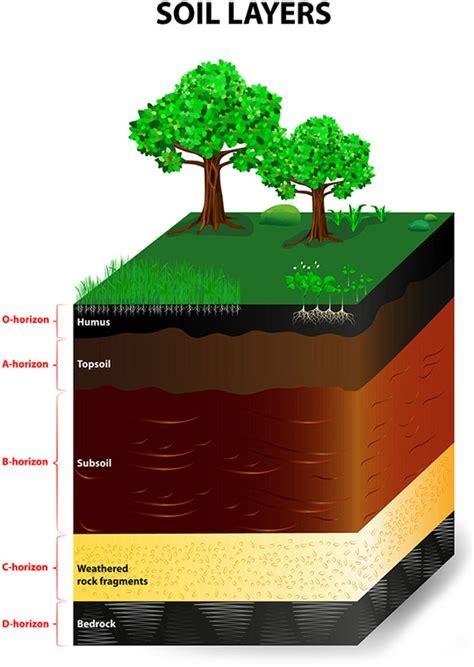soil horizons climate  soil composition