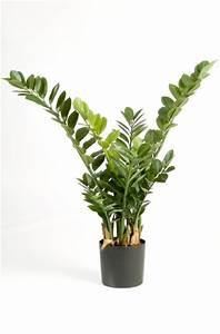 Künstliche Pflanzen Wie Echt : fachh ndler f r kunstpflanzen und kunstb ume ~ Michelbontemps.com Haus und Dekorationen
