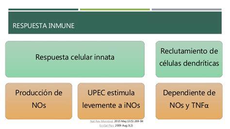 Escherichia Coli Uropatógena (upec