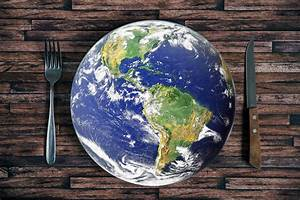 Are Genetically Modified Foods Necessary To Feed The World