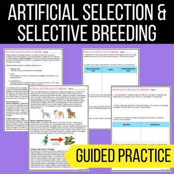 There is terrain that is lightly colored and there artificial selection: Student Exploration Evolution Natural And Artificial Selection Answer Key Pdf + My PDF ...