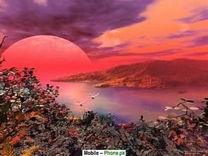 Beautiful Scenery in the World