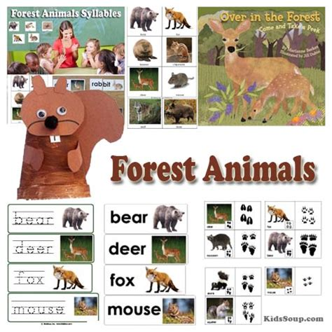 into the forest preschool weekly plan and activities 595 | Forest animals preschool activities