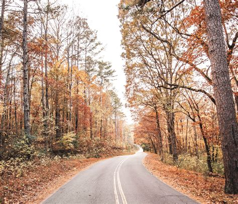fall foliage trips usa