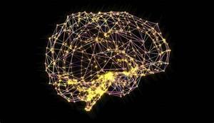 Dunlopillo Blue Vision Impulse : human brains are wired to blame rather than praise fortune ~ Sanjose-hotels-ca.com Haus und Dekorationen
