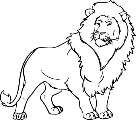 Coloring Page Of Lion Murderthestout