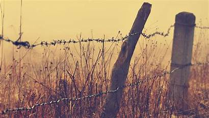 Wire Fence Wallpapers Barbed Barb Birds Hipwallpaper