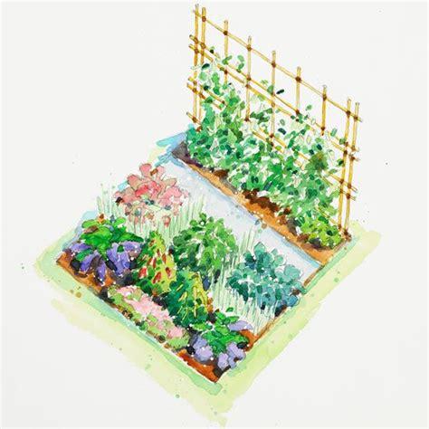vegetable garden plans
