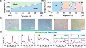 Domain Size Evolution In The 2d Molybdenum Rhenium