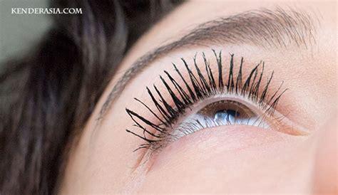 No Eyelashes Makeup Tips