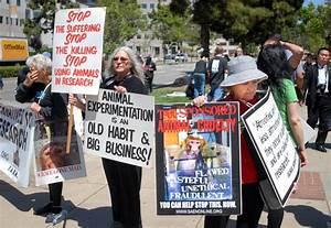 Animal Testing Protest