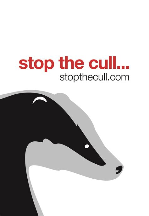 badger cull petition take and help to stop the badger cull dassen