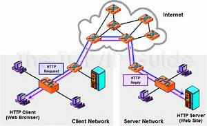 The Tcp  Ip Guide  Ip Services And Client  Server