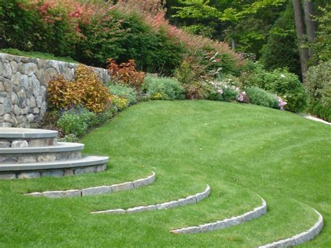 giardino erba prato giardino prato come curare il prato