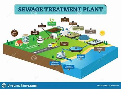 Sewage Treatment Vector Plant Water Dirty Illustration