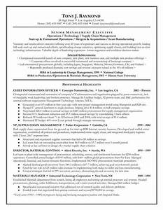Your best executive level resume writing company resume for Best executive resume writing companies