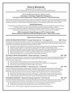 resume executive summary samples experience resumes With free resume summary