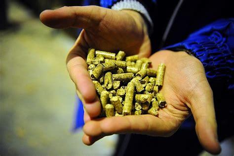 Eiropā lielākais kokskaidu granulu ražotājs būvēs rūpnīcu ...
