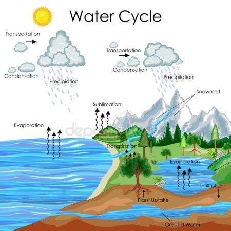 education chart  water cycle diagram stock vector