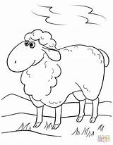 Sheep Coloring Pages Cartoon Lamb Drawing Printable Simple Mary Had Getdrawings Crafts Through sketch template
