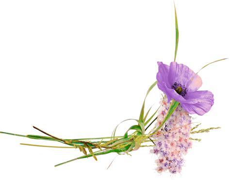 fleurstubeflowerspng