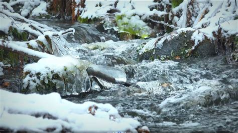 Winter River Stream First Snow Scenery No Loop Youtube