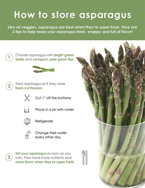 how to make asparagus how to store asparagus infographic food style