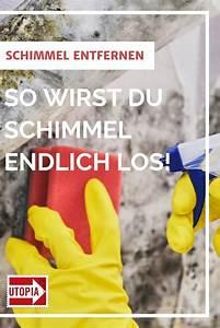 Schimmel Von Wand Entfernen : schimmel entfernen und vorbeugen aber richtig in 2020 schimmel entfernen schimmel entfernen ~ A.2002-acura-tl-radio.info Haus und Dekorationen