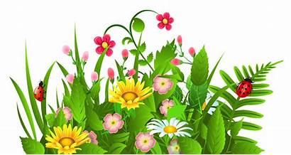 Garden Clipart Row Gardening Clip Transparent Flower
