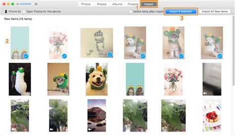 import all photos from iphone to mac how to import photos from iphone to mac macos