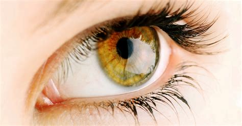hazel what determines hazel eye color