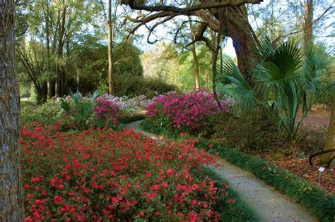 gainesville botanical gardens gainesville botanical garden gainesville location