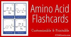 Amino Acid Flashcards