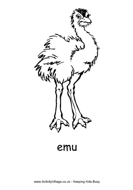 emu colouring page