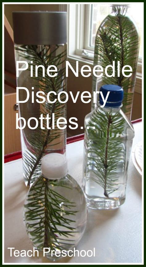 eagle nest alphabet advent p is for patience 708 | Pine Needle Discovery Bottles