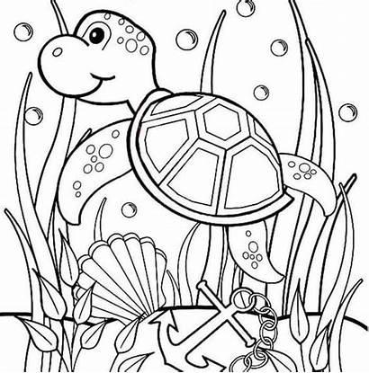 Turtle Sea Coloring