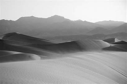 Sand Filter Dunes Morning During Cartridge Wood
