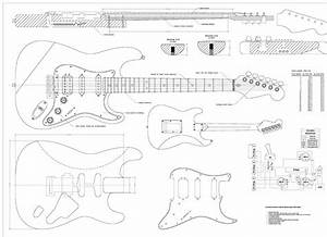 Stratocaster Diagram