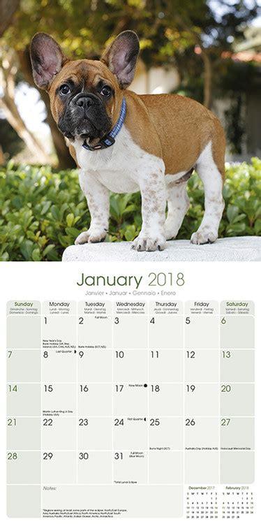 french bulldog calendars ukpostersabposterscom