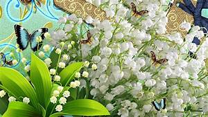plus d39une semaine d39avance pour la cueillette du muguet With affiche chambre bébé avec bouquet de fleurs muguet