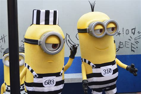 meet  minions  despicable     universal