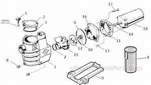 Hayward Sp2807x10 Parts List And Diagram