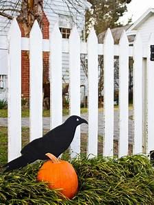 Black Raven Design Giant Raven Outdoor Halloween Decoration Hgtv