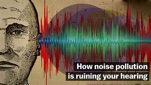 Noise Pollution  Explained