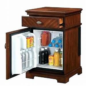 Mini Fridge Cabinet Furniture Site About Home Room