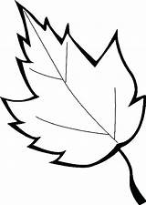 Coloring Leaf Leaves Printable Pages Oak Marijuana Holly Maple Sheet Leafs Printables Sugar Drawing Getcolorings Template Clipartmag Getdrawings Templates Autumn sketch template