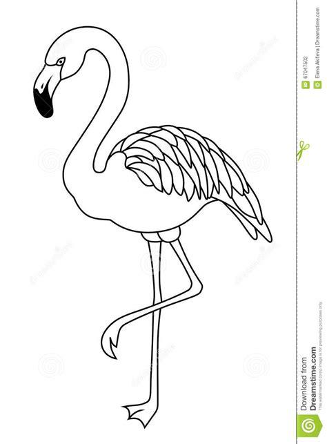 illustrazione bianca nera delluccello del fenicottero
