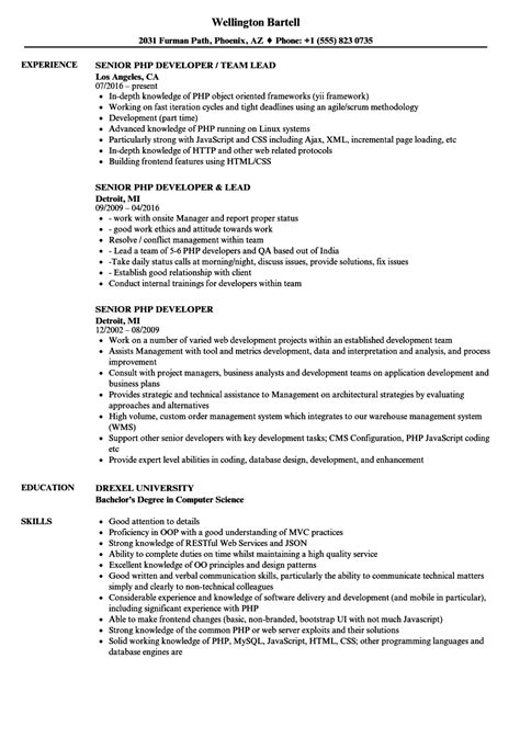amusing php programmer resume format study abroad essay