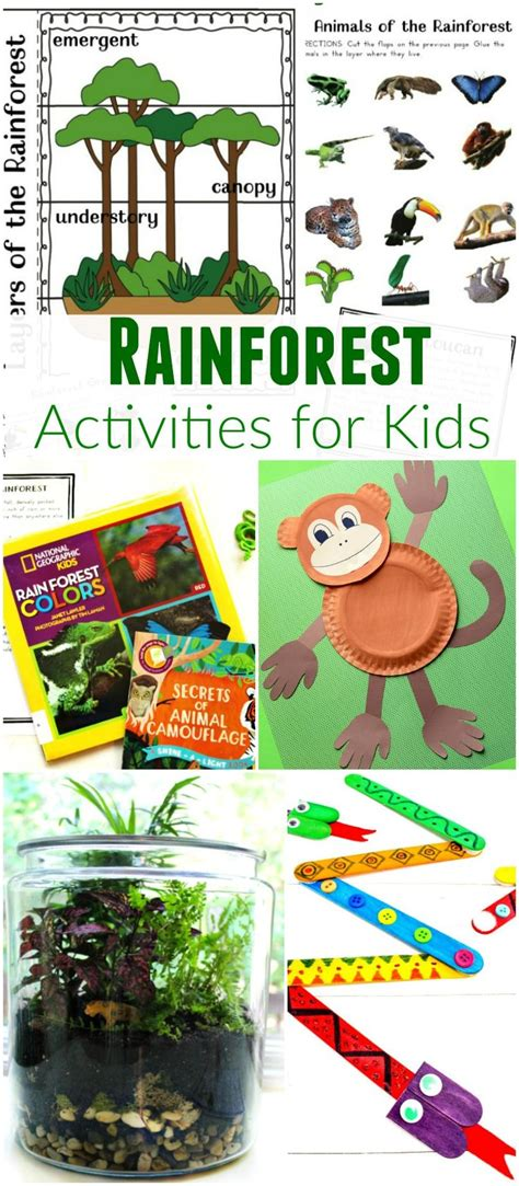 best 10 rainforest crafts ideas on jungle 280   9630e173b1f023a732250c1404d82c24 rainforest crafts rainforest activities
