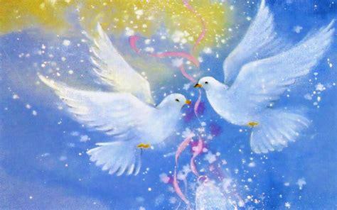 love birds cynthia selahblue cynti
